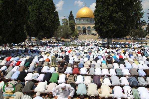 يديعوت تكشف خطة إسرائيلية من 8 بنود لقمع انتفاضة المقدسيين