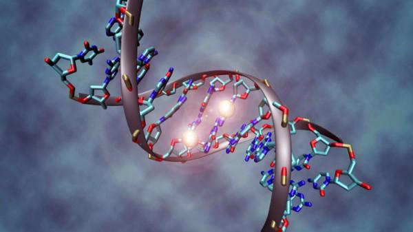 أطباء: الحمض النووي يبين تاريخ الوفاة