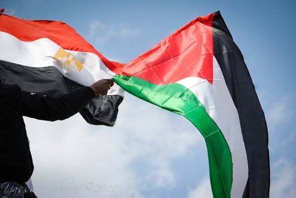 مبادرة شجرة الزيتون من غزة تنظم لقاء تفاعليا مع مجموعة عودة المصرية
