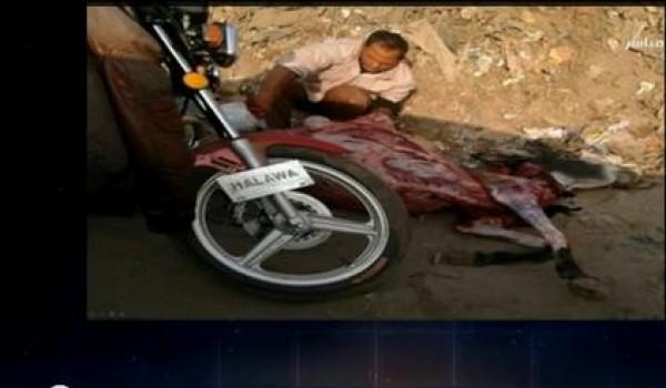 بالفيديو.. مواطن يذبح حمارا تحت دائرى بالقليوبية