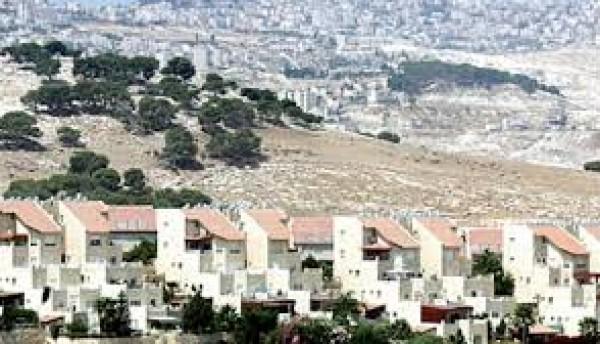 حكومة نتنياهو تستحضر مشروع إيغال آلون في هجوم استيطاني مسعور يستهدف الأغوار الفلسطينية
