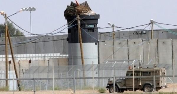 أبراج الاحتلال العسكرية تُطلق النار على مزارعين فلسطينيين يحصدون القمح شرقي خزاعة في خانيونس