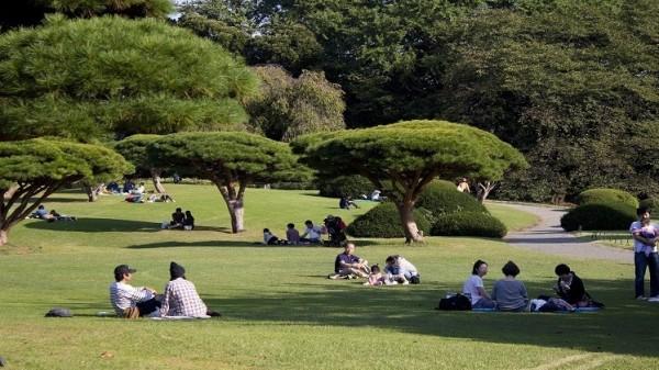 سائح يدخلون حديقة يابانية مجانا