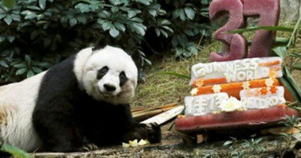 إغلاق حديقة حيوان وطنية لوداع