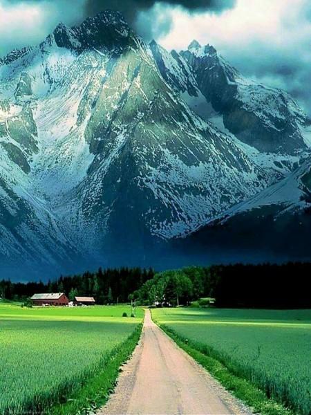 الطرق الأكثر جمالاً في العالم