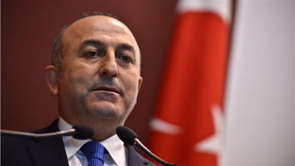 تركيا تدعو لرحيل المنسق الأمريكي 9998824417.jpg