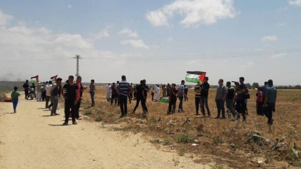 """بمسيرات داعمة للأسرى.. عشرات الإصابات """"بينها خطيرة"""" بمواجهات مع الاحتلال بالضفة والقطاع"""