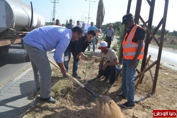 الجمعية التعاونية لمربي النحل بغزة تنفذ فعاليات زراعة أشتال حرجية