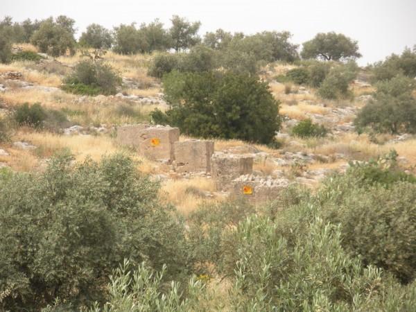 المركز الفلسطيني يبدأ بإزالة حقل ألغام دير أبو ضعيف بجنين