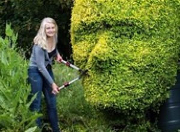 بريطانية تحول أشجار حديقتها لتماثيل لأفراد عائلتها