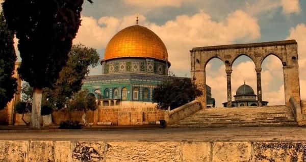 قاسم النجار- جنة جنة يا وطنا فلسطين