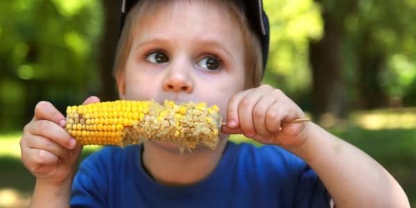 فوائد الذرة للطفل