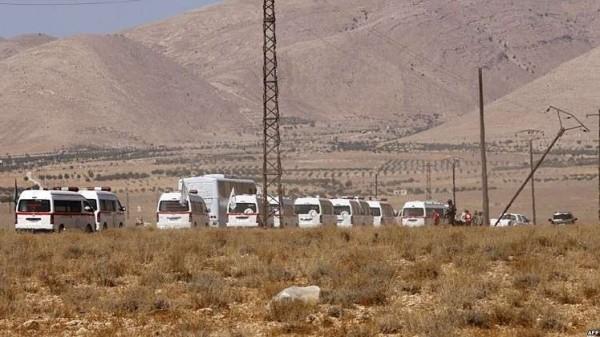 حافلات تنظيم الدولة التائهة تصل إلى دير الزور