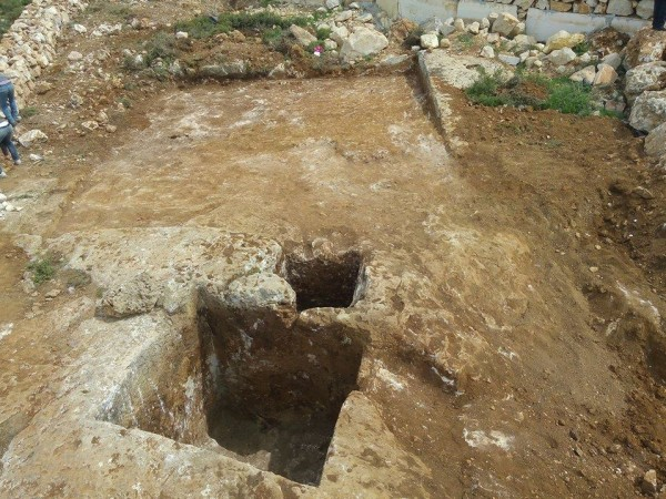 معاصر النبيذ الرومانية في سلفيت فلسطين