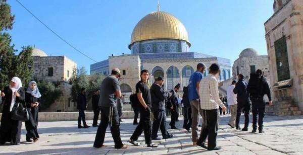 الخطيب: إدخال الرموز الدينية اليهودية بالأقصى هدفه تغيير الوضع القائم بالمسجد