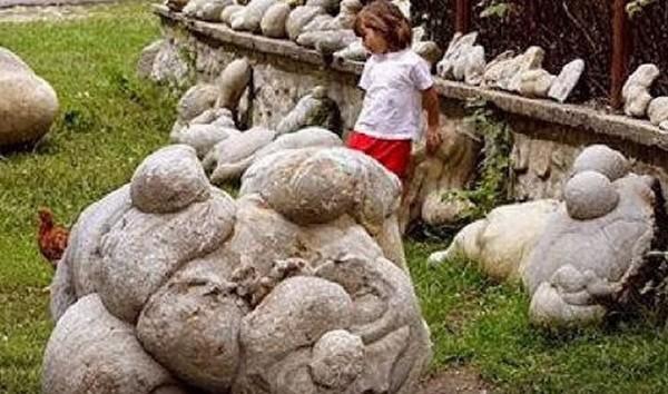 تتنفس وتنمو وتتحرك الحجارة الحية تثير حيرة العلماء