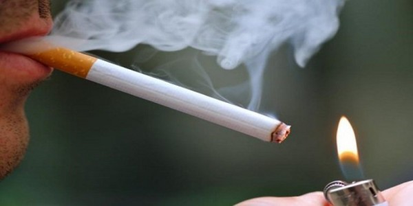 نوفل: وضع السجائر قبل وبعد المصالحة واحد.. والضرائب على العلبة الواحدة 300%