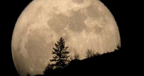 أمريكي يدعي ملكية أرض القمر ويبيع أراضيه