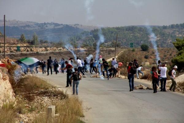 إصابة عشرات المواطنين في مواجهات مع الاحتلال في قلقيلة
