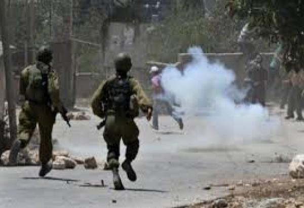إصابة أربعة مواطنين بمواجهات مع الاحتلال في بيت فوريك