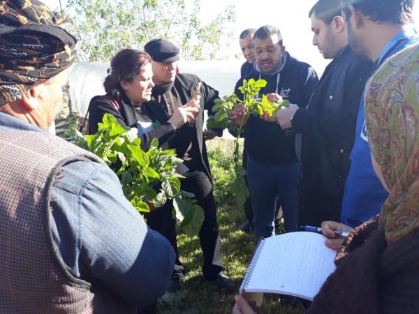 الإغاثة الزراعية تتوجه لزيارة مزارعي المناطق الحدودية