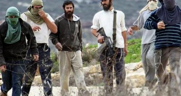 مستوطنون يهاجمون عوريف جنوب نابلس