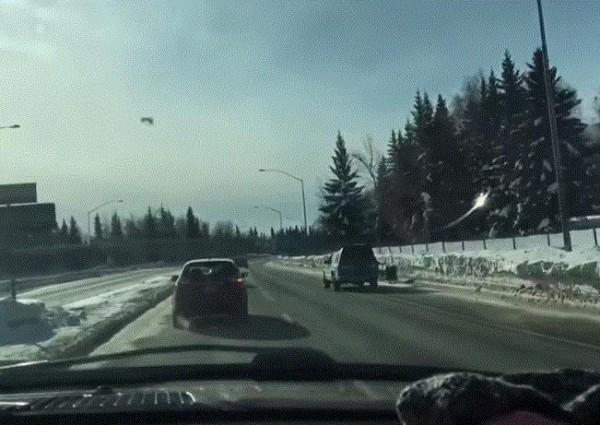 فيديو: كلاب للجر تفقد صاحبها في ألاسكا