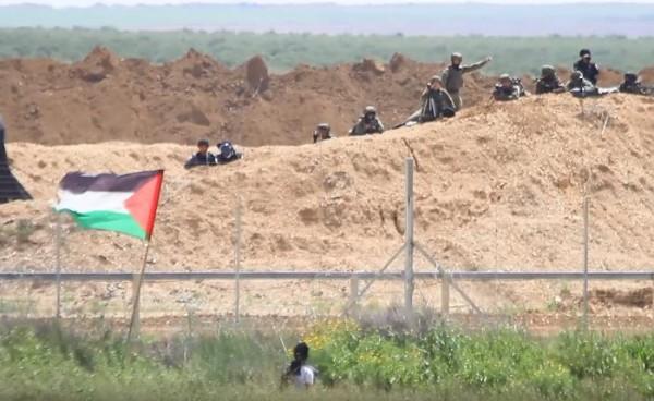 فيديو: شابان يتحديان جنود الاحتلال ويرفعان العلم على السلك الفاصل