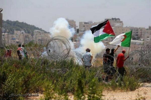 الجزائر تدين الإجراءات الإسرائيلية ضد أهالي غزة