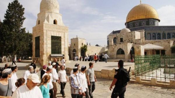أكثر من 50 مستوطناً يقتحمون باحات المسجد الأقصى
