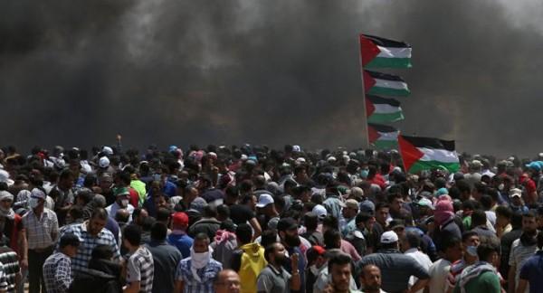 بلجيكا تُطالب سفيرة إسرائيل باعتذار رسمي عن تصريحاتها بشأن (ضحايا غزة)