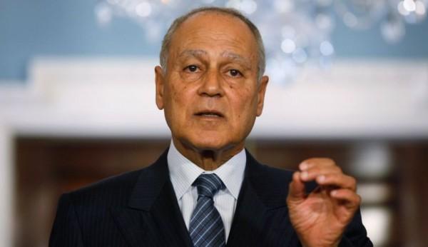 أبو الغيط يبحث مع رئيس الجمعية العامة للأمم المتحدة حماية الفلسطينيين دولياً