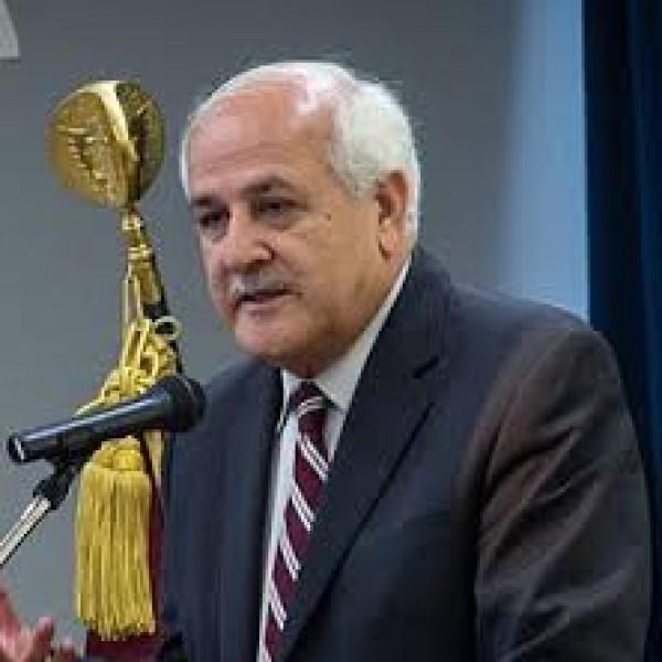 منصور: احترام مبادئ القانون الدولي الإنساني حماية للمدنيين والأطفال