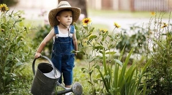 كيف تحمي الحديقة المنزلية في الأجواء الحارّة؟