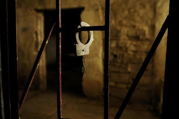 الأسرى يعانون من انتشار الحشرات في السجون الإسرائيلية