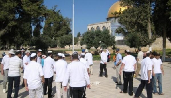 على دفعتين.. مستوطنون يواصلون اقتحامهم لباحات المسجد الأقصى ودعوات للنفير العام