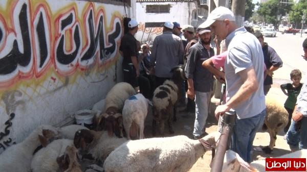 """فيديو: عدسة """"دنيا الوطن"""" ترصد أجواء عيد الأضحى المبارك بغزة"""