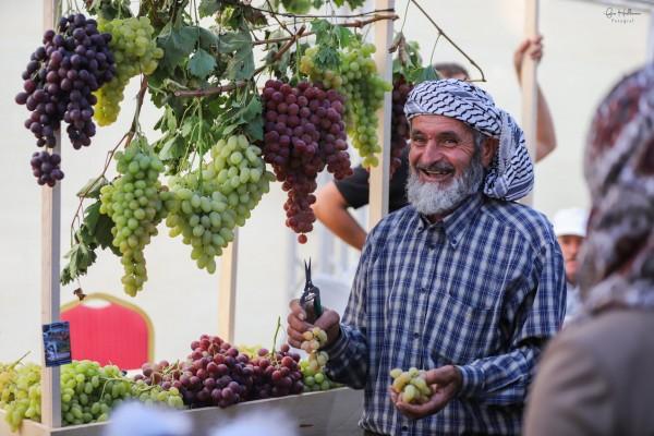 اختتام فعاليات مهرجان العنب الفلسطيني 2018 في حلحول