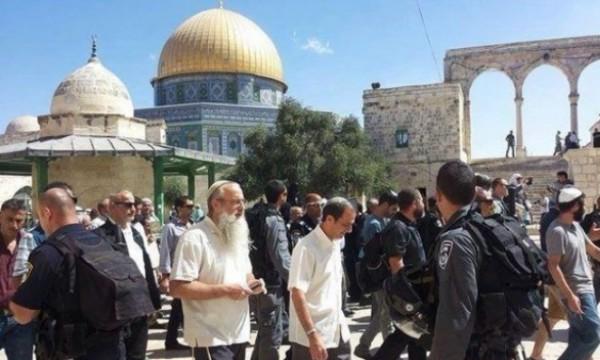 87 مستوطنًا يقتحمون باحات المسجد الأقصى بحماية قوات الاحتلال