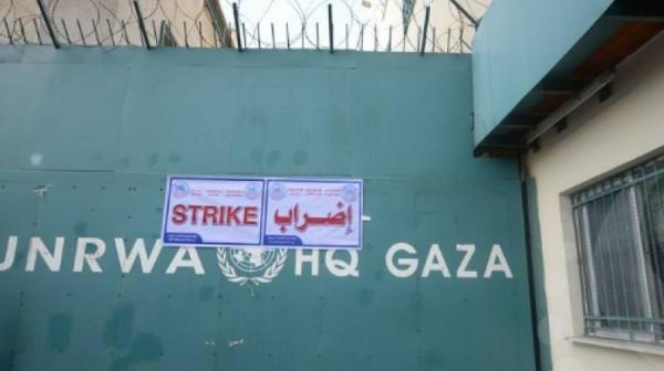 الإضراب الشامل يعم جميع مؤسسات وكالة (أونروا) في قطاع غزة