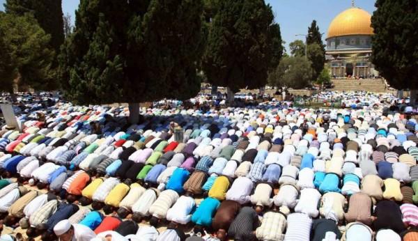 35 ألف مواطن يؤدون صلاة الجمعة في المسجد الأقصى
