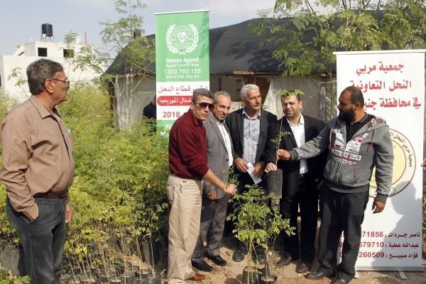 جنين: الاحتفال بإطلاق الحملة الوطنية لزراعة أشتال المورينجا