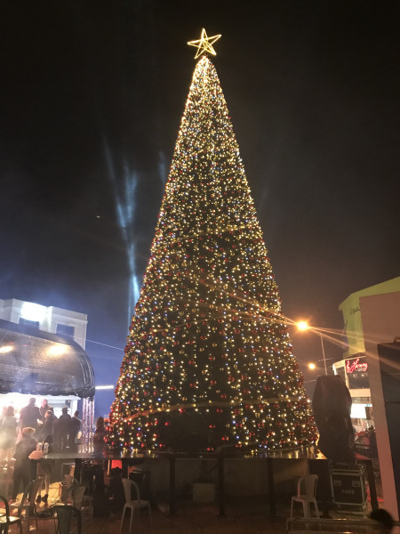 بيت ساحور تحتفل بإضاءة شجرة الميلاد