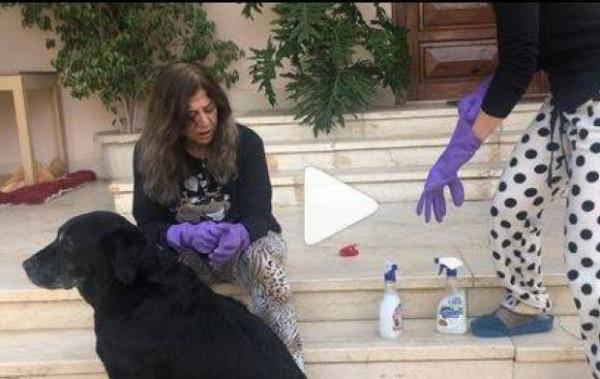 """نجمة مصرية تثير ضجة بفيديو مع والدتها.. ولماذا قالت لها """"انت عبيطة"""""""
