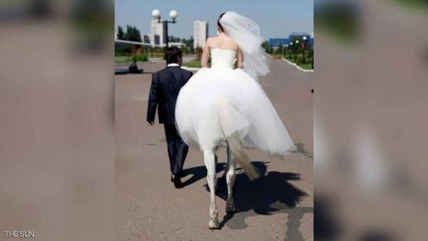 العروس الفرس