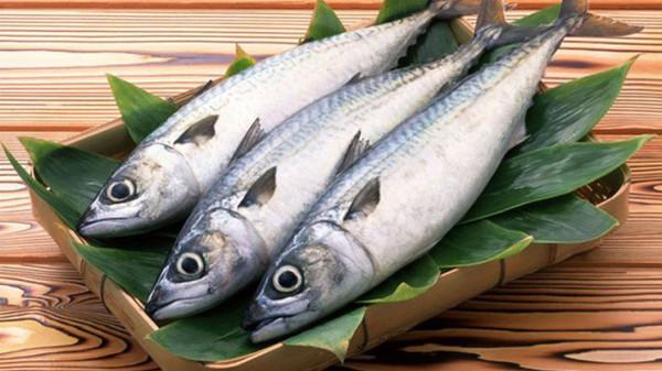 غير السمك.. تعرف على مصادر أخرى للفسفور