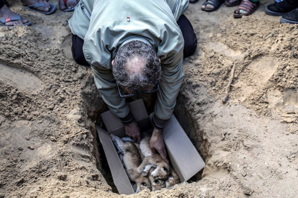 بعد نفوقهم بسبب المنخفض الجوي.. دفن الأشبال الأربعة في قطاع غزة