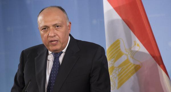 شكري: حل الدولتين الركيزة الأساسية لتحقيق السلام والاستقرار في المنطقة
