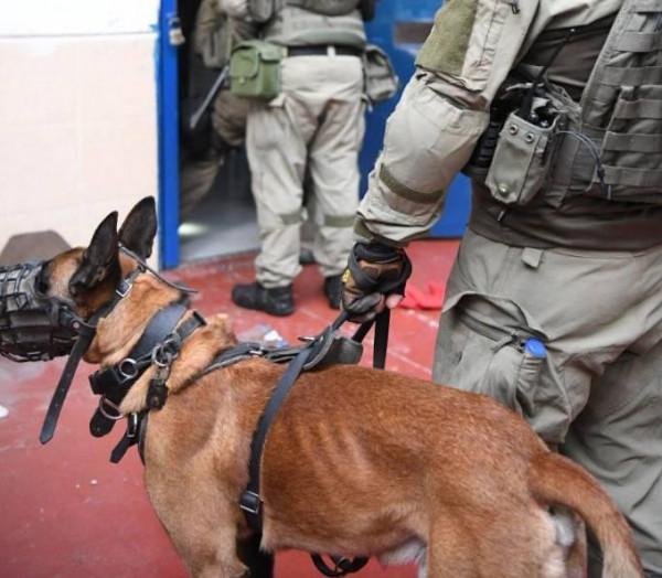 الأشقر: جريمة اقتحام (عوفر) هي الأخطر منذ 2007