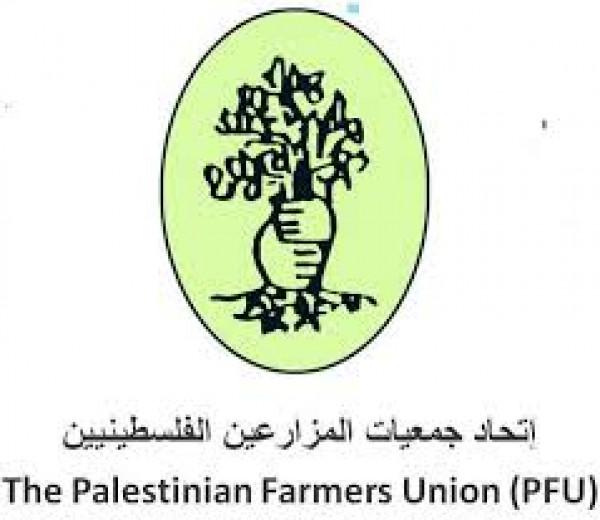 اتحاد المزارعين الفلسطينيين ينفذ ورشة تطوير نظم الانتاج الزراعي